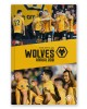 Wolves Official Annual 2020-21