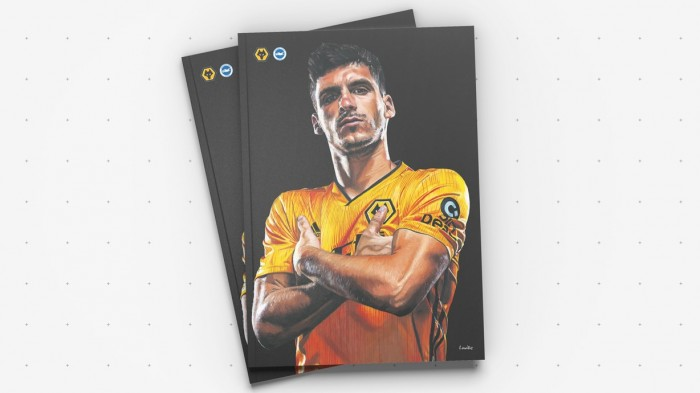 Wolves Vs Brighton Programme