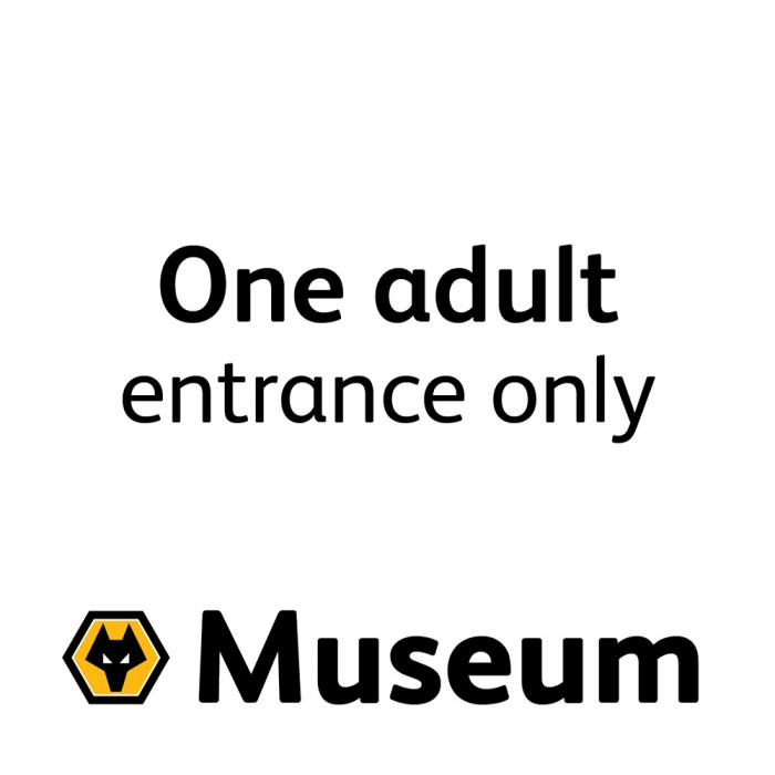 Adult Museum Ticket